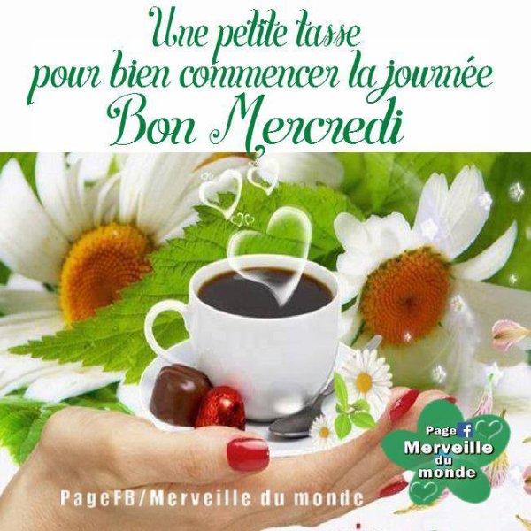 Bonjour les Z'ami(e)s