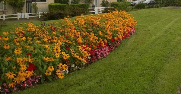 IRAKA Jardinier et paysagiste