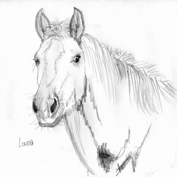 Portrait de Louna