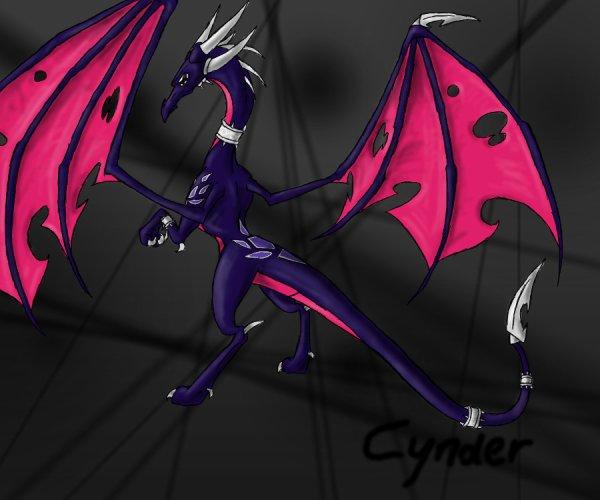 Cynder-votre choix!