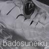 BadoSUNEIKU