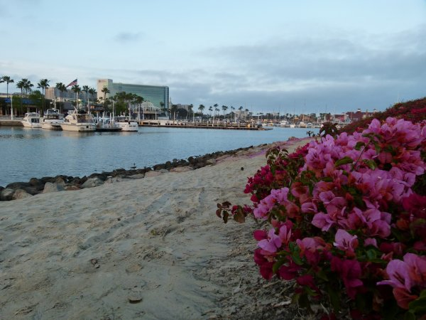 ;)    Promenade paradisiaque sur le port de Long Beach (alentour de Los Angeles)    ;)