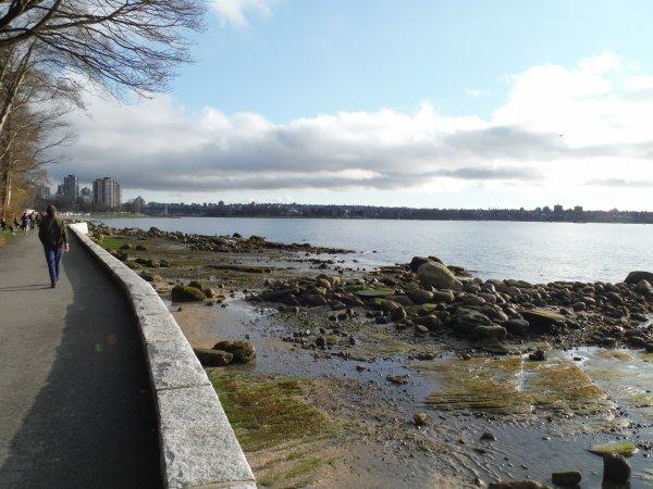 :)    Stanley Park de Vancouver    :)
