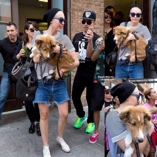 Miley Cyrus porte son chiot Emu  dans ses bras tout en quittant son hôtel à New York. (lundi après-midi (4 Août).