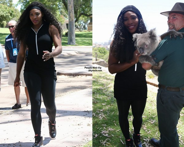 Serena Williams prend la pose avec un Koal au Kings Park . (dimanche (4 Janvier) à Perth, en Australie occidentale.)