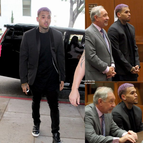 Chris Brown, avec ses cheveux violets, en arrivant pour une audition à Los Angeles Superior Court  (vendredi (20 Mars) à Los Angeles.)