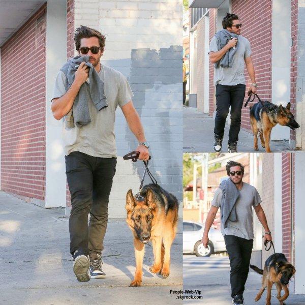 Jake Gyllenhaal a été avec son chien Leo pour une promenade dans le quartier de L.A (lundi (20 Avril) à Los Angeles.)