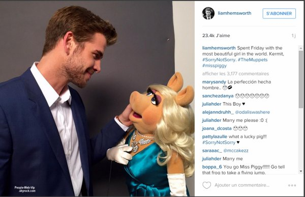 """Liam Hemsworth débarque sur Instagram ! Liam aposté sa première photo, avec pour légende  """"J'ai passé la soirée avec la plus belle fille du monde. Kermit (le compagnon de Peggy dans la série, ndlr), désolé, mais je ne suis pas désolé !""""  avec Miss Piggy!"""