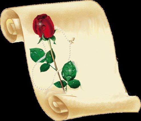 offre cette rose a mon vampire que j adore est que la couleur rouge sinbolise la couleur du san qui sera eternelle pour nous