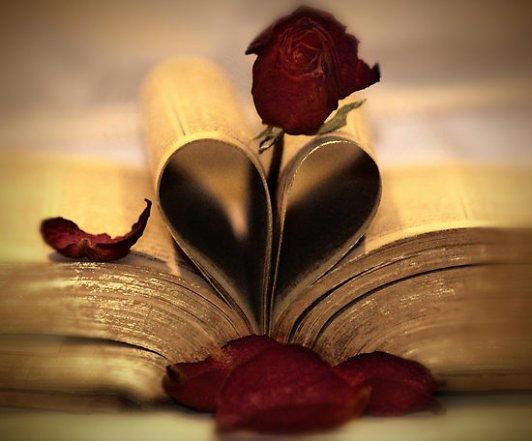 mon coeur je t aime du plus profon de mon coeur est de mon ame est tu est la presonne la plus inportante a mais yeux que l amour que j ai pour toi je la crire au monde entier  je t aime grave bb