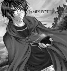 Présentation de James Potter