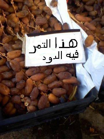 في الجزائر فقط