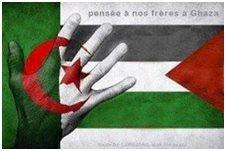 مع فلسطين