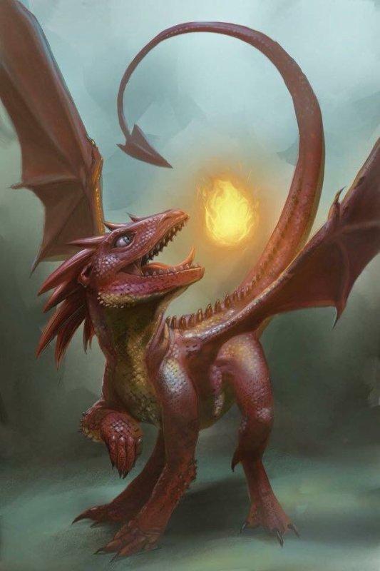 Mes dragons