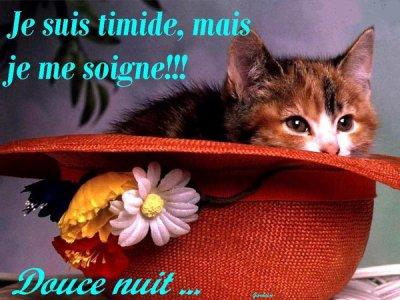 bonne nuit dous reves mes amis(es) familles et tlm a demain