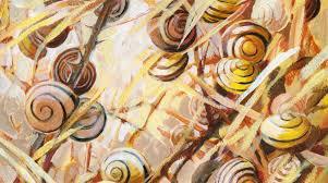l'escargot et la limace