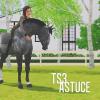 Astuces-TS3