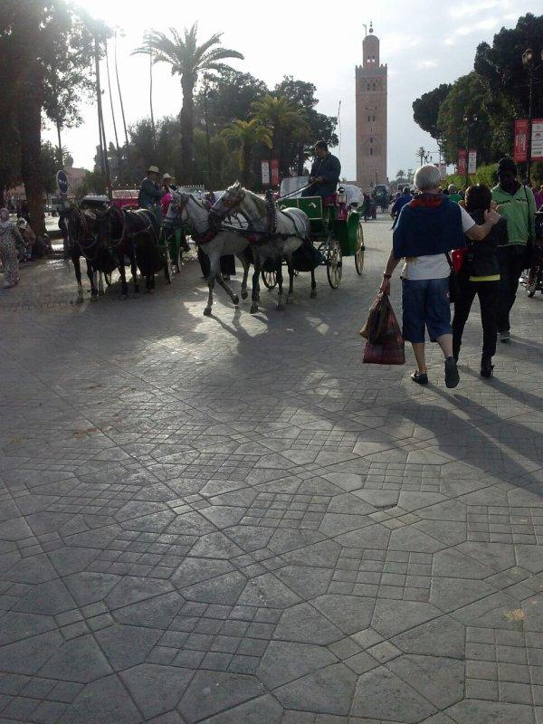 En vacance au maroc pour le festival du film (Marrakech)