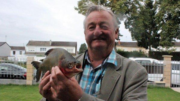 Insolite : un homme pêche un piranha dans la Somme