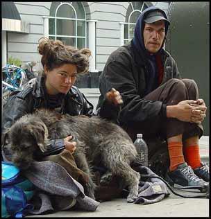 Le chien et la condition Humaine