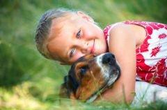Seul le chien garde un peu d'humanité