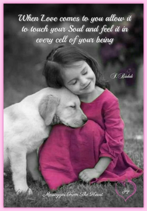 Les enfants aiment les animaux et les animaux aiment les enfants .