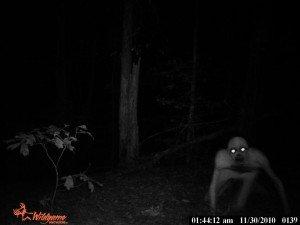 un extraterrestre photographié ?