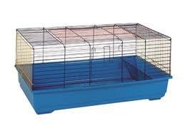 Cage ou liberté ?