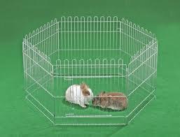 Cage ou liberté ? (partie 2)