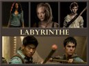 Photo de Fiction-Labyrinthe
