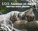 Photo de AnimauxSOS61
