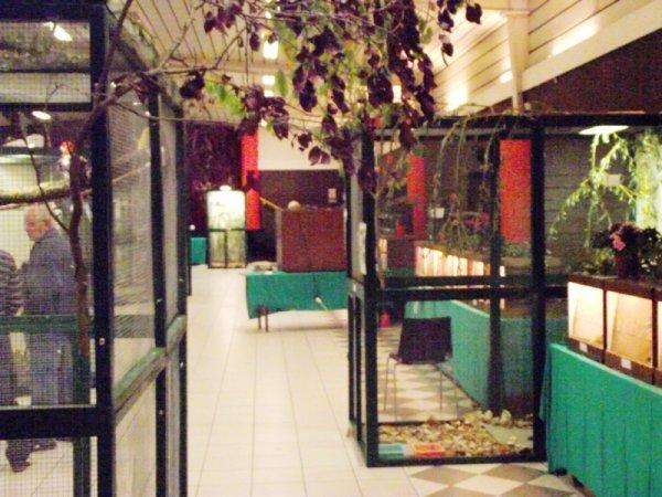 photo de la salle d'exposition 2011