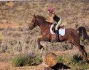 Photo de Horse--dream--x3