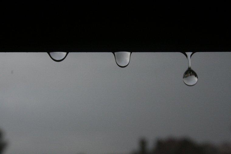 Sais-tu comme j'aime l'odeur de la pluie ?
