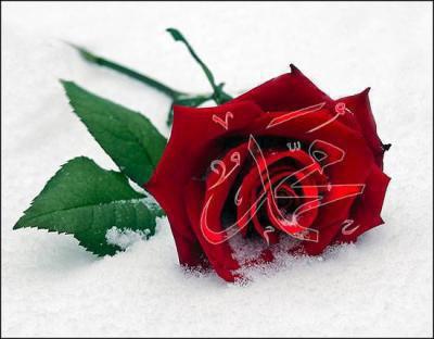 Parole du Prophete Mohammad SAWS