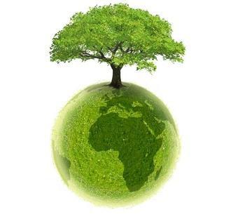 Des ONG Ecologistes Font Amies Amies Avec Les Multinationales Pollueuses