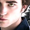 Twilight-Saga--x