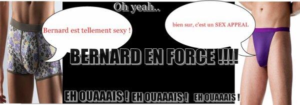 Oh yeah; Bernard est dans la place ;)