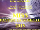 Photo de Miss-Pays-de-la-Gohelle