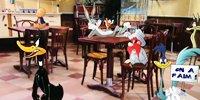 Bunny Tonic spécial Plus belle la vie !   Le 31 décembre dès 8h30 sur France 3...