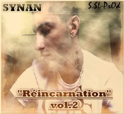 """REINCARNATION vol.2 / SYNAN - """"DSL"""" (Exclu 2011) (2011)"""