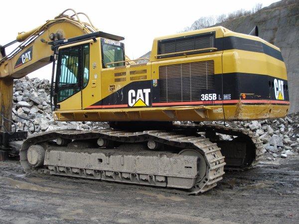 cat 365 1/1 VS CAT 365 1/50