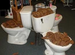 toilette debordant de merde!