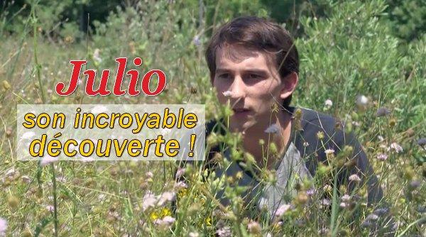 Julio découvre la liaison d'Estelle
