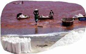 lac rose senegal dakar