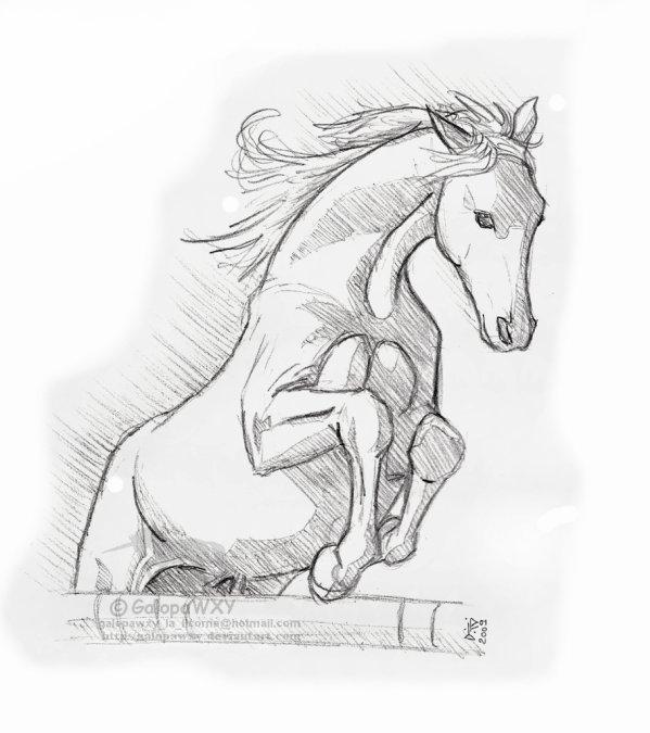 Un cheval qui saute pr une amie blog de la tagueuse de 6iem - Cheval qui saute dessin ...