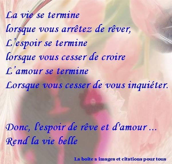 belle vie!!!!!