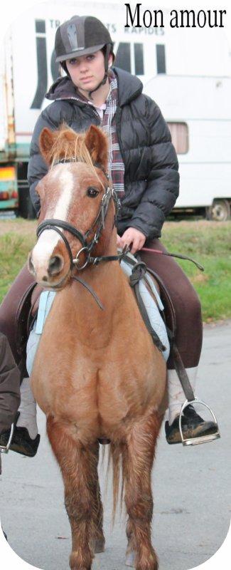 Mon amour de poney