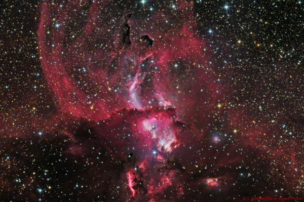 Les étoiles, ce lien qui nous unit