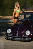 Photo de vw-air-cooled